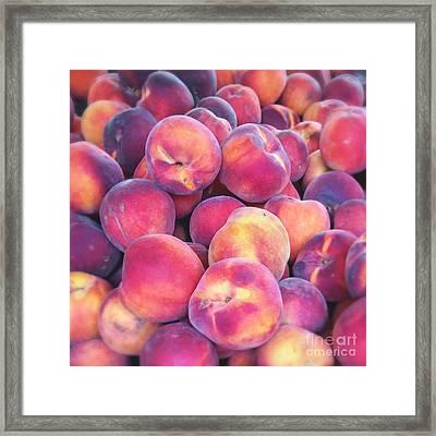 Nectarine Food Photograph Framed Print