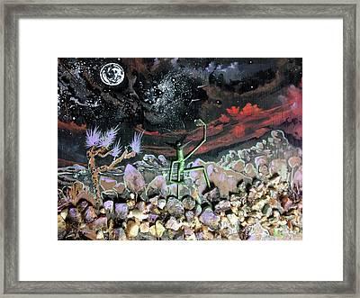 Haystack Needle Framed Print