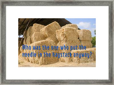 Needle In The Haystack Anyway? Framed Print by Humorous Quotes