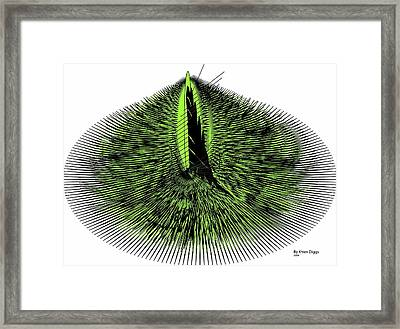 Needles Framed Print by Karen Diggs