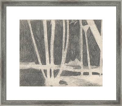 Negative Nile Framed Print by T Ezell