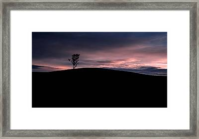 Negative Paradise Tree Framed Print