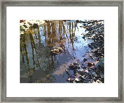 Neil Wellivers Bluegill Hole Framed Print by Charlie Spear