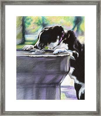 Nellie Framed Print by Carol Meckling