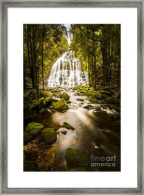 Nelson Falls Framed Print by Jorgo Photography - Wall Art Gallery