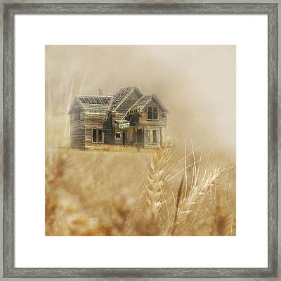 Nelson Homestead 2 Framed Print by Angie Vogel