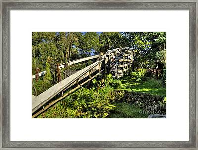 Nemesis In Autumn Framed Print by Rob Hawkins