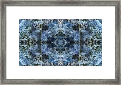 Nemeton Framed Print by Tim Gainey