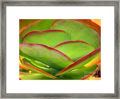 Neon Cactus Framed Print by Kathie McCurdy
