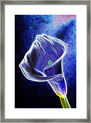 neon Calla lilly Framed Print by Gary Brandes