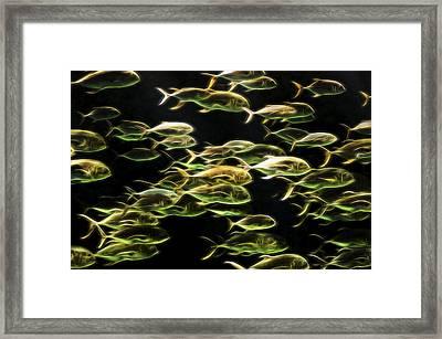 Neon Fish Framed Print