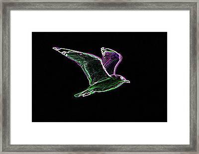 Neon Gull Framed Print by Betty LaRue