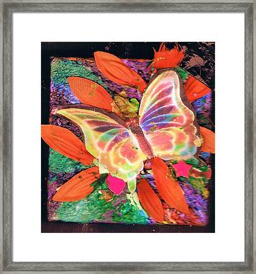 Neon Lights Butterfly On Boxed Canvas Framed Print by Anne-Elizabeth Whiteway