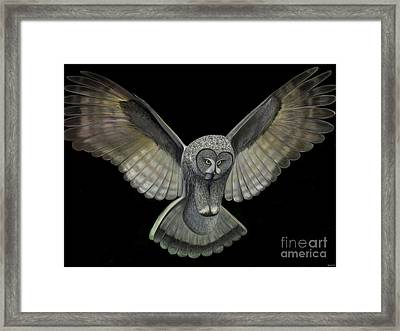 Neon Owl Framed Print by Rand Herron