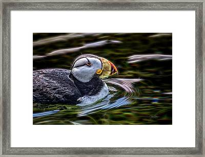 Neon Puffin Framed Print