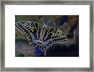 Neon Swallowtail Butterfly Framed Print