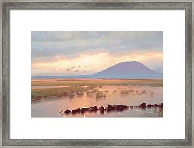 Nephin Dawn Framed Print by Conor McGuire