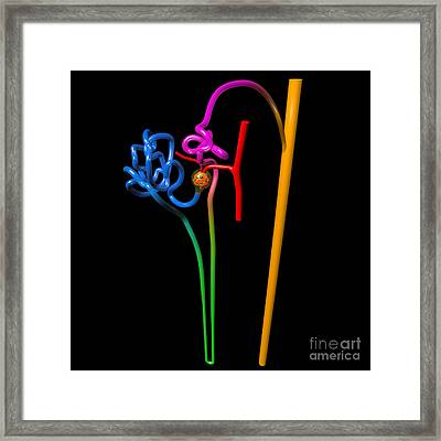 Nephron Black Framed Print by Russell Kightley