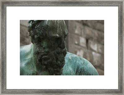 Neptune Statue 3 Framed Print by Chuck Parsons