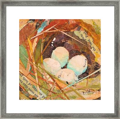 Nest 5 Framed Print