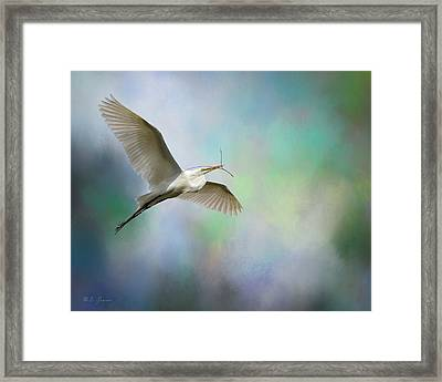 Nest Builder Framed Print