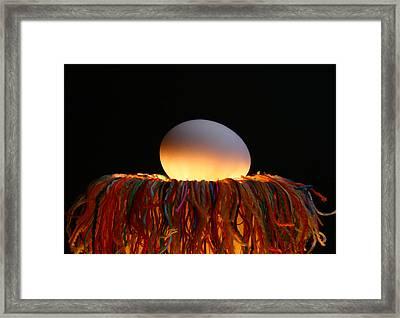 Nest Framed Print by Mark  Ross