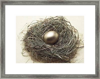Nest With Golden Egg Framed Print