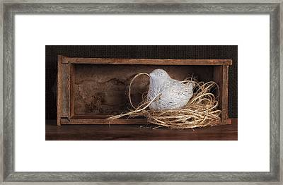 Nesting Bird Still Life II Framed Print by Tom Mc Nemar