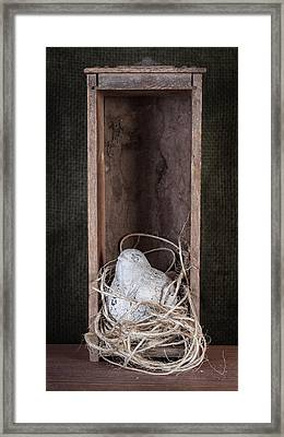 Nesting Bird Still Life Framed Print by Tom Mc Nemar
