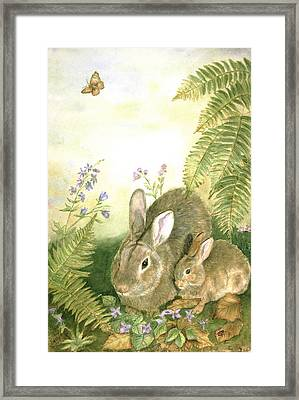 Nesting Bunnies Framed Print by Patricia Pushaw