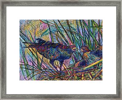 Nesting Framed Print by Kendall Kessler