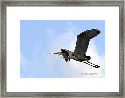 Nesting Material Framed Print by Don Durfee