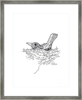 Framed Print featuring the drawing Nesting by Michael Ciccotello