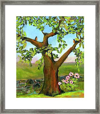 Nesting Tree Framed Print by Blenda Studio