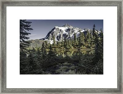 Nestled Framed Print