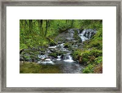 Nestucca River Framed Print by Jean Noren