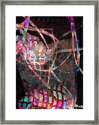 Net Framed Print by Dave Kwinter