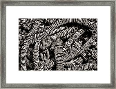 Net Gear  Framed Print by Olivier Le Queinec