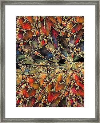 Net Webbed Wall Framed Print by Ian Duncan Anderson