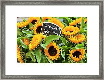 Netherlands Sunflowers Framed Print by Joan Carroll