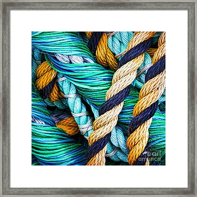 Nets And Knots Number Five Framed Print
