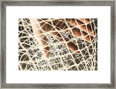 Nets And Trappings Framed Print by Jorgo Photography - Wall Art Gallery