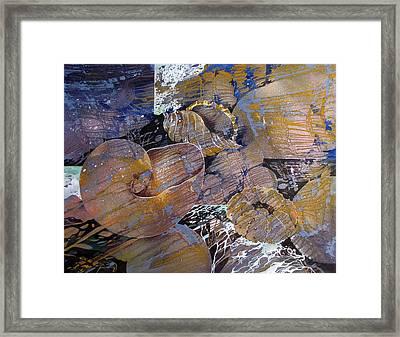 Netted Framed Print by Rae Andrews