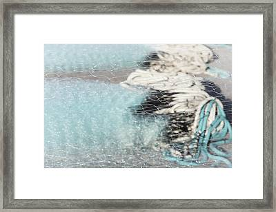 Netting The Sea Framed Print