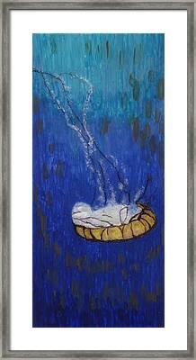 Nettle Jellyfish Framed Print by Phil Strang