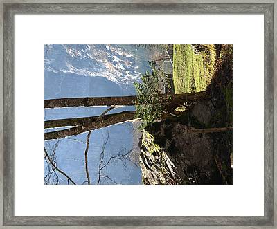 Neutral Framed Print by Randall Slinkard