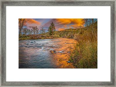 Framed Print featuring the photograph Nevada Gold  by Scott McGuire