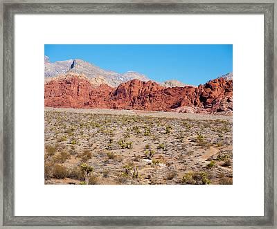 Nevada's Red Rocks Framed Print by Rae Tucker