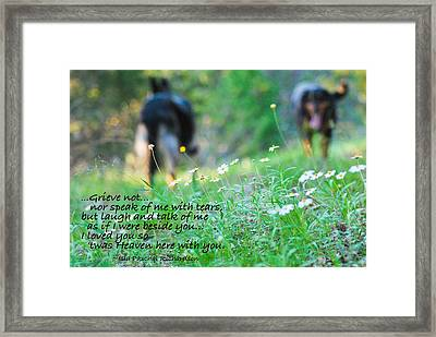 Never Forgotten Framed Print by Barbara Shallue