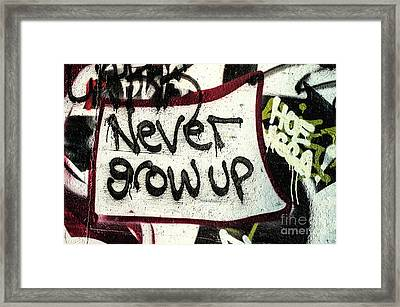 Framed Print featuring the photograph Never Grow Up by Terry Rowe